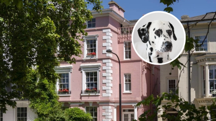 101 Dalmatians House London